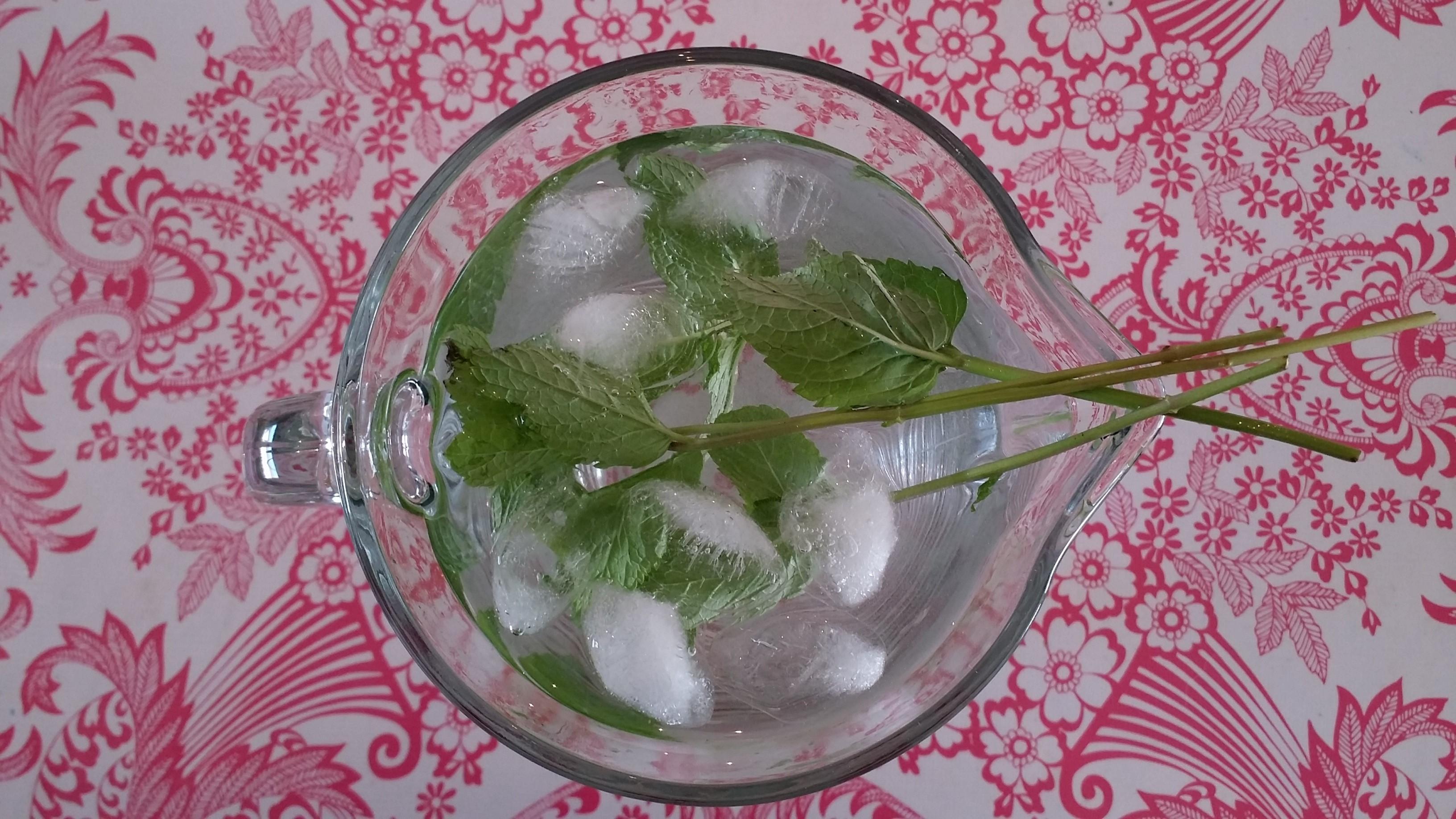Cucumber Water (1)