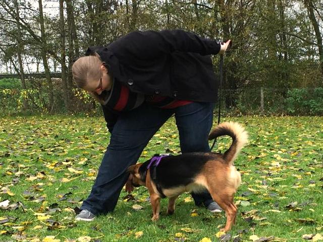 Twinkly Tanya ~ Review Doggy Dance Workshop at Dog School 'De Vrije Hond' by Doggy Dance Teacher Nathalie Klaassen   101 in 1001   Day Zero Project